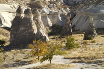 Velley Zelve in Cappadocia Turkey
