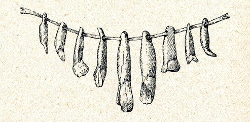 Neolithic teeth beads (Rinjukalns, Latvia)