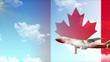 Canada trip airplane