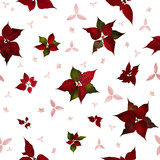 Seamless Poinsettia Christmas Flowers