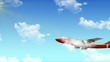World trip plane