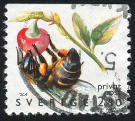 Sweden Bee