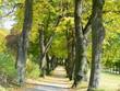 Fototapeten,wege,natur,landschaft,landschaft