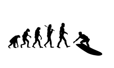 Evolution Surfing 2