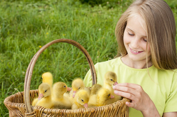 girl holding a basket with goslings