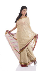 Indian girl in traditional Indian sari on white background.