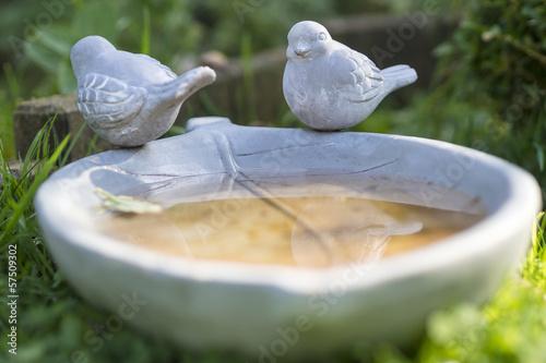 Wasserschale für Vögel im Garten