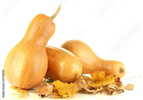 Ripe pumpkins with yellow autumn leaves isolated on white