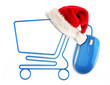 Christmas online shopping concept