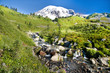 Mount Rainier volcano at Paradise, USA