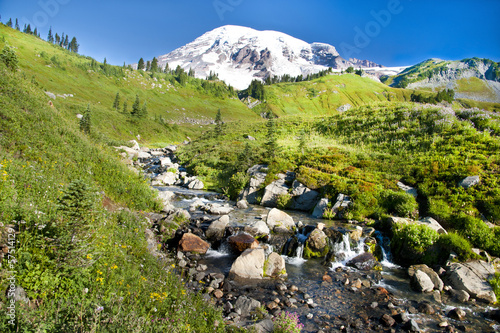 Mount Rainier volcano at Paradise, USA