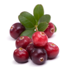 Cranberry with leaf on white background