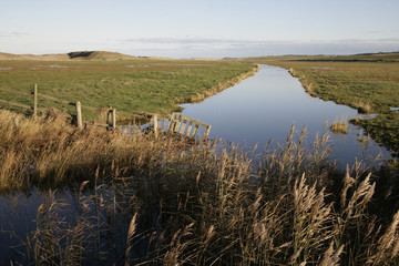 Cley marshes nature reserve,