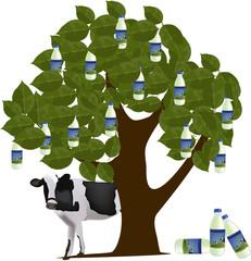 albero del latte