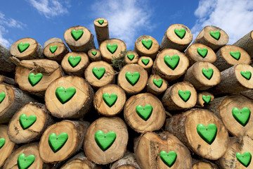 Wooden Logs with Green Hearts