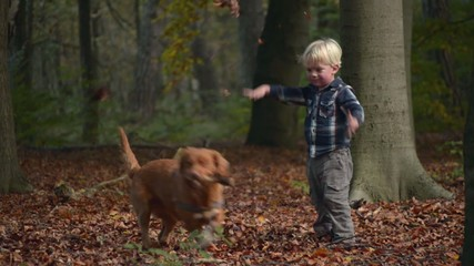 Boy playing in woods with autumn leaves and dog