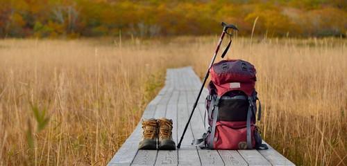 紅葉の草原を歩く