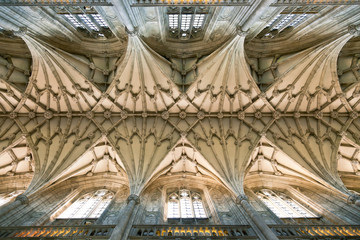 Winchester Cathedral vaulting