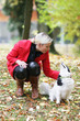 Frau mit Hund im Herbst