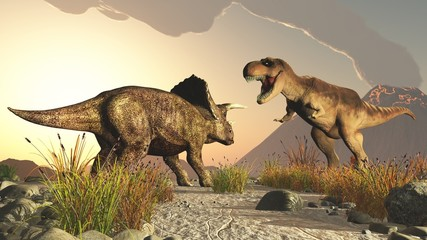triceratops and tyrex tyrannosaurus rex