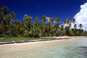 Plage aux Antilles