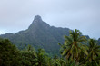 Te Manga mountain in Rarotonga Cook Islands