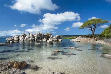 Plage de palombaggia Corse France