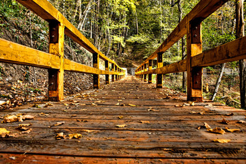 Wooden Bridge HDR
