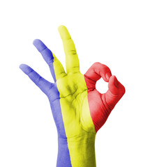 Hand making Ok sign, Romania flag painted