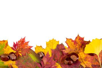 Herbstblätter mit Kastanien