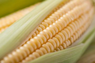 Macro shot of corn