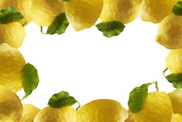 Cornici di Limoni