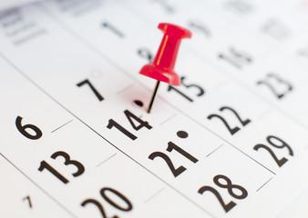 calendrier 14 février punaise