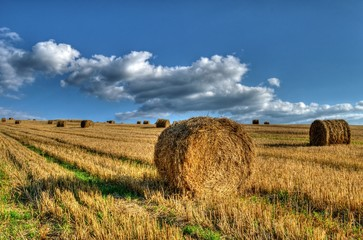 straw bales 1