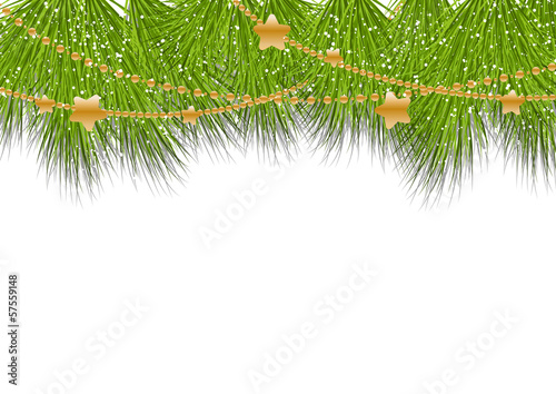 Christmas background with pine branches