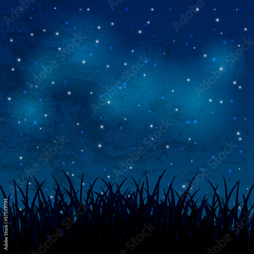 Night sky with shiny stars