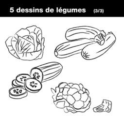 Légumes : chou, courgette, concombre, chou-fleur