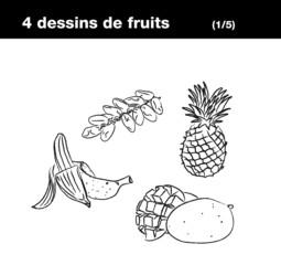 Fruits exotiques : banane, ananas, datte, mangue