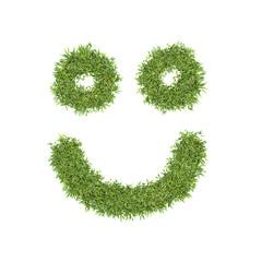Grass smiling, eco symbol concept