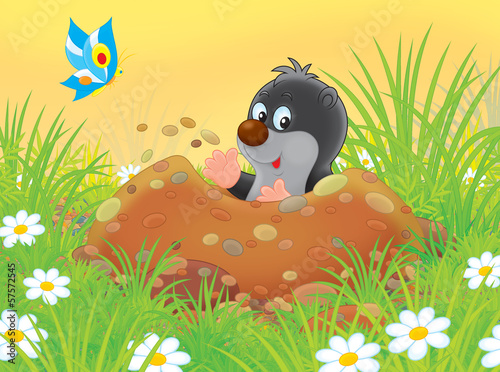 little mole digging a burrow