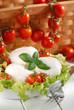 mozzarella di bufala italiana con pomodorini di pachino