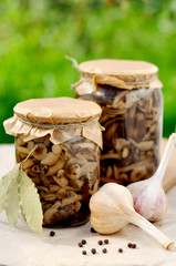 Canned Marinated Honey Fungus, copy space for your text