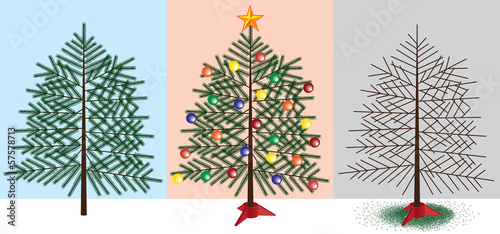 Christmas tree stages