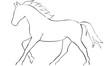 pferd - 57583119