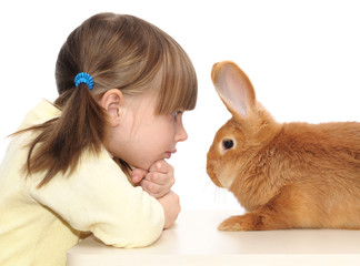 little girl and brown rabbit