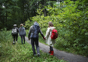 Four People Hiking in Forest