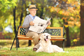 Senior man seated on a bench reading a newspaper with his dog