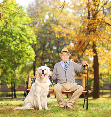 Senior man sitting on a bench with his dog in a park