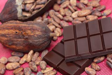 Schokolade mit Kakaobohnen und Kakaofrucht
