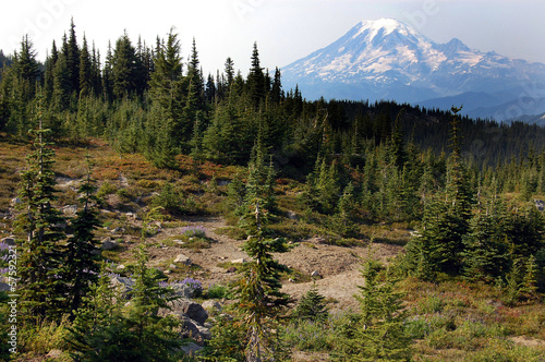 Mount Rainier, Washington state USA